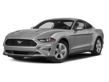 2019 Ford Mustang GT PREMIUM FASTBACK Goldsboro NC
