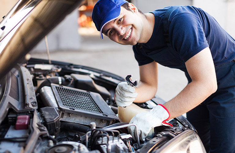 Engine & Cabin Filter Replacement