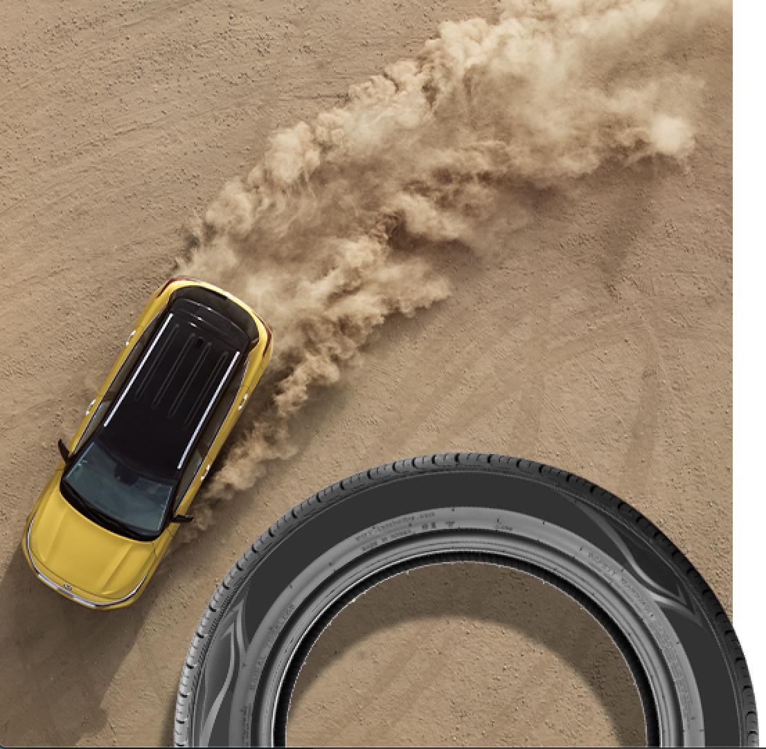 Online Tire Rebate