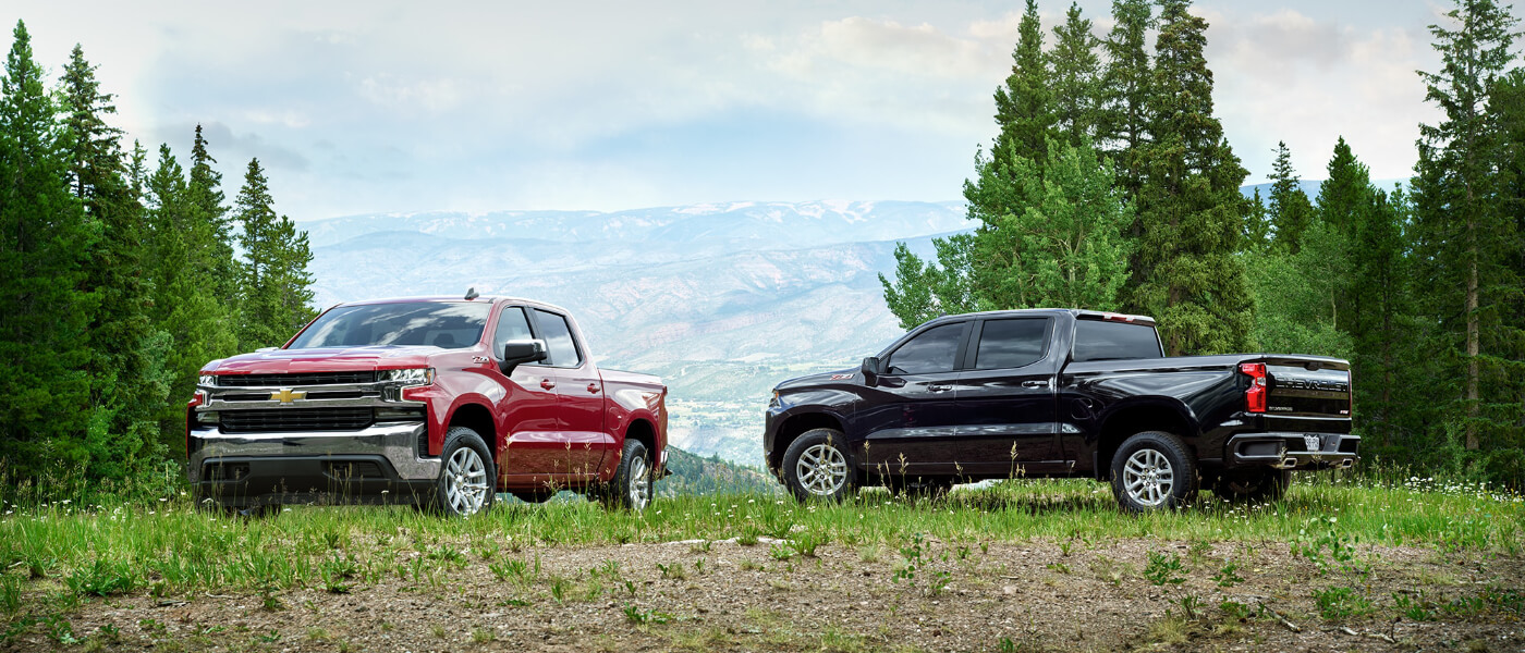 2019 Chevy Silverado 1500 exterior two parked in forest