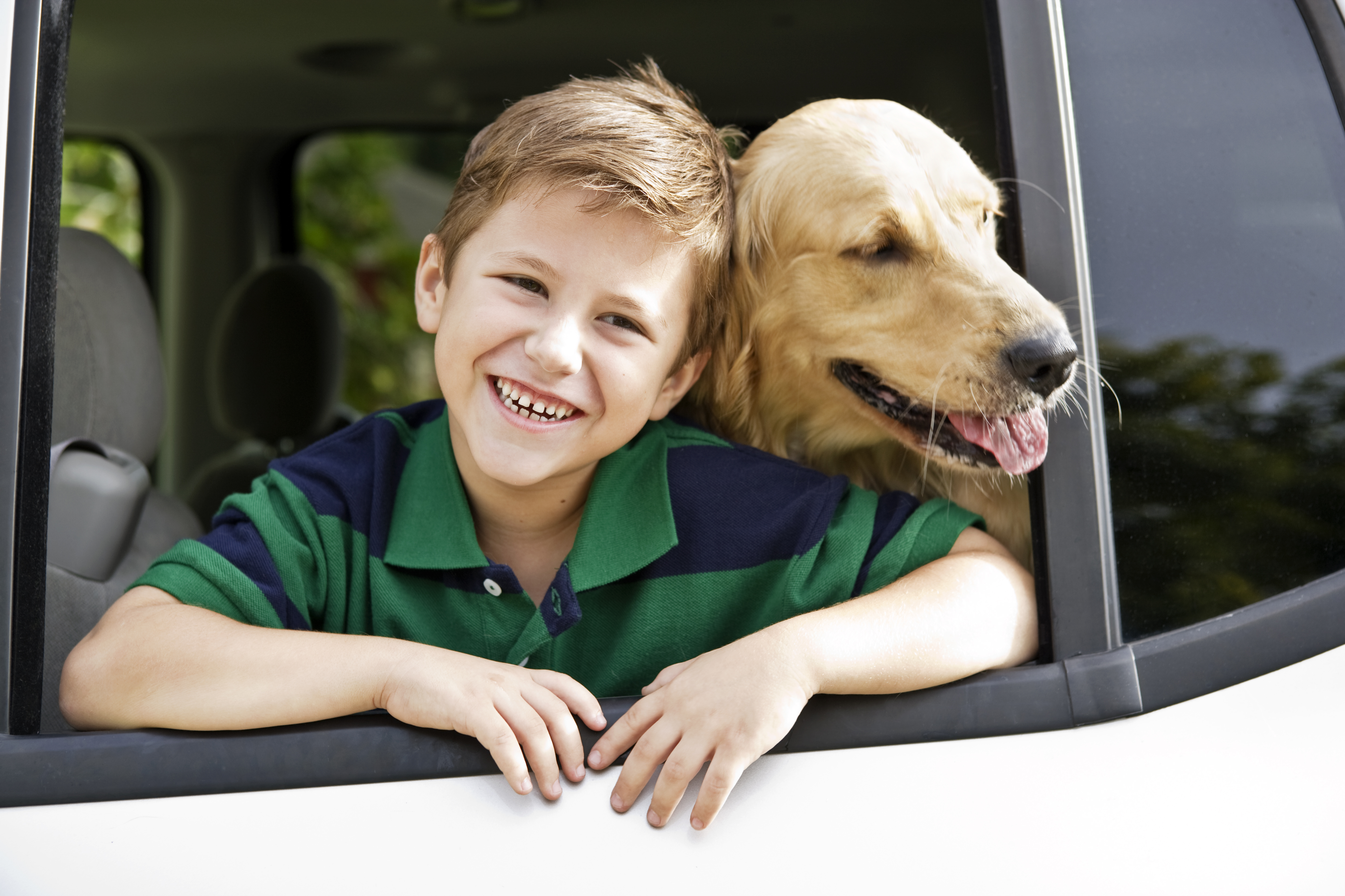 boy leaning out the car window with his dog
