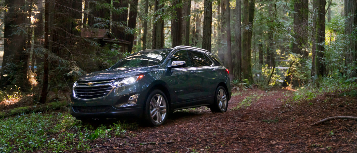 2020 Chevy Equinox exterior in forest