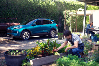 Ford escape parked beside a man planting flowers