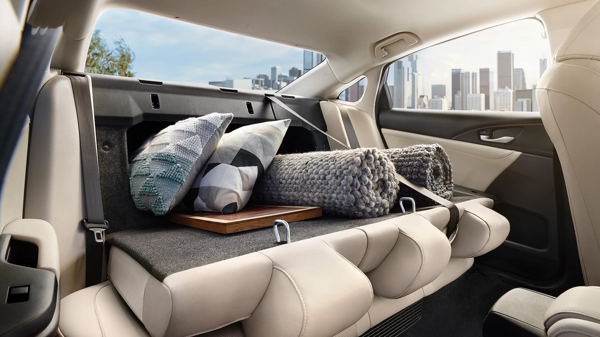 insight interior/exterior cabin