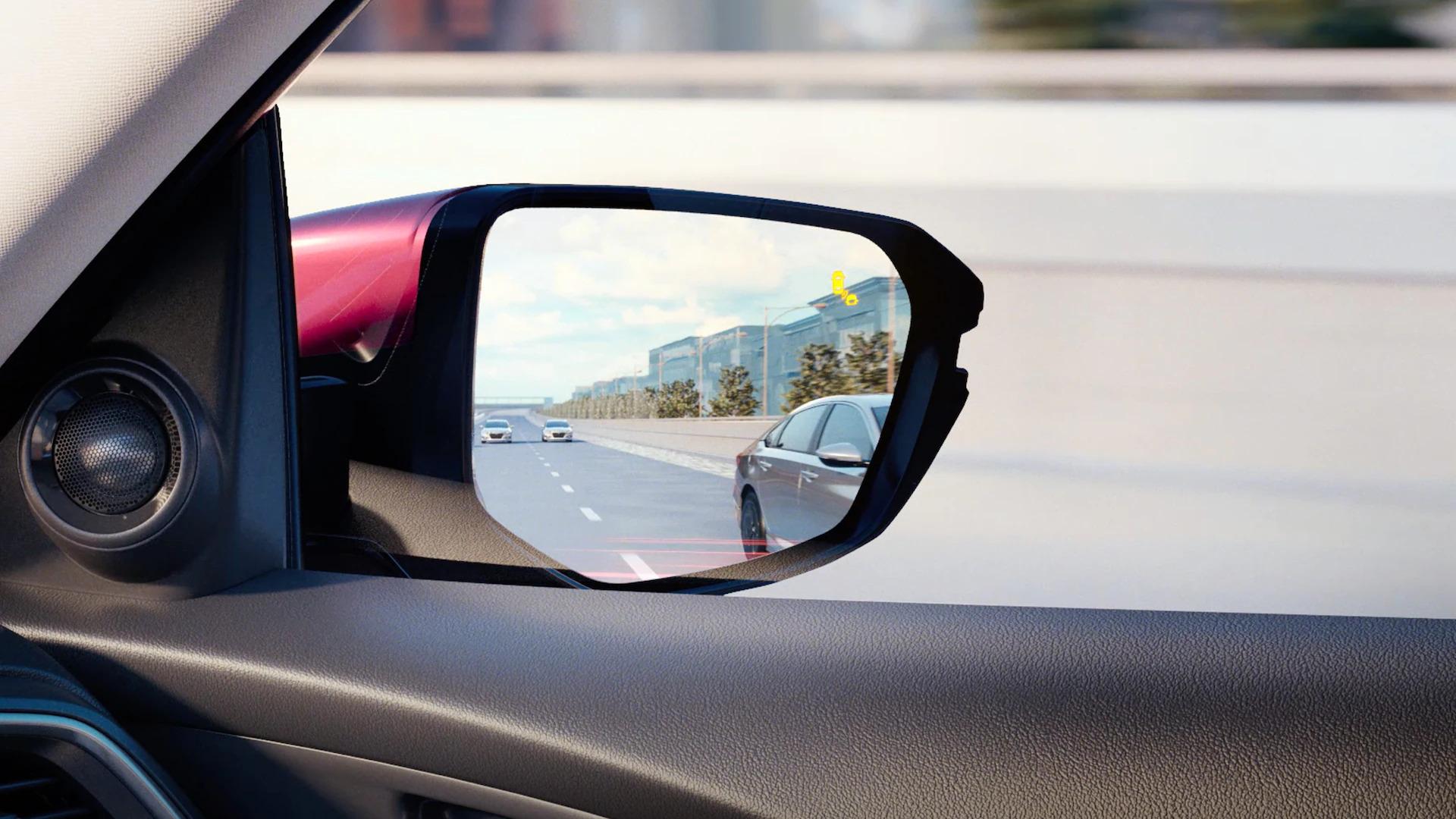 insight peace of mind blind spot info system